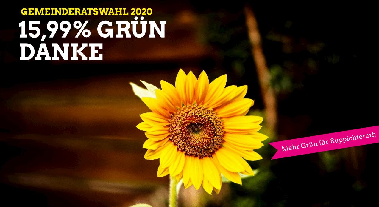 Danke, Bild von einer Sonnenblume